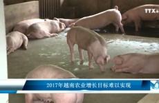 2017年越南农业增长目标难以实现