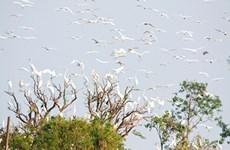 海阳省拨出近两万美元投入白鹭岛风景区生态保护基础设施