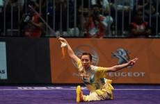 SEAGAME:越南击剑、自行车、武术运动员获得金牌