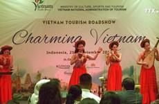 越南努力开发印尼旅游市场