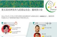 图表新闻:第五届亚洲室内与武道运动会:越南获13金