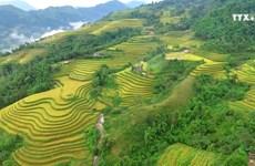 社区旅游——保护少数民族文化的良策