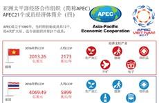 图表新闻:APEC21个成员经济体简介(四)