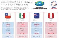 图表新闻:APEC21个成员经济体简介(五)