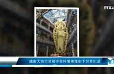 越南大叻市灵福寺麦秆菊佛像创下世界纪录