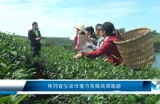 林同省宝录市着力发展高原旅游