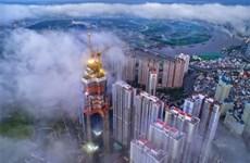 摄影爱好者镜头中的西贡之美(组图)