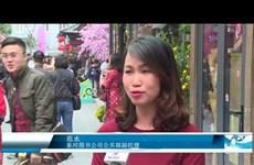2018年戊戌春节图书街开街迎客
