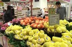 致力在日本推广越南农产品的品牌形象