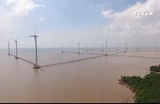 德国和丹麦向越南分享发展风电的经验