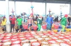 进入收获高峰期,宁顺省渔民满载而归
