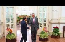 越南与新加坡同意充分和有效展开合作协议