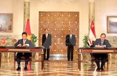越南与埃及联合声明:巩固两国战略互信