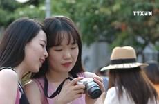 国庆放假期间岘港市接待游客量大幅增长