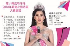 图表新闻:陈小微夺得2018年越南小姐选美大赛的后冠