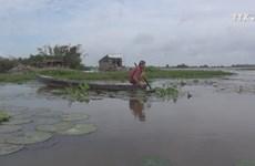 汛期——九龙江三角洲农民谋生之季