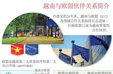 图表新闻:越南与欧盟伙伴关系简介