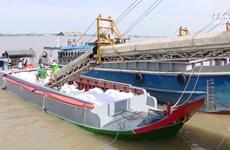 越南需注重打造大米品牌   提高产品价值