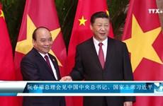 阮春福总理会见中共中央总书记、国家主席习近平