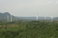 广治省迎来可再生能源领域的投资浪潮