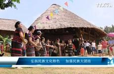 弘扬民族文化特色   加强民族大团结
