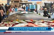 越南水产企业力求在欧洲市场上站稳脚跟