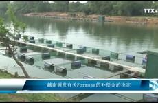 越南颁发有关Formosa的补偿金的决定