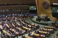 越南将努力做好联合国安理会非常任理事国的任务