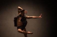 2019河内舞蹈联欢会——越南与世界当代舞蹈的交流平台
