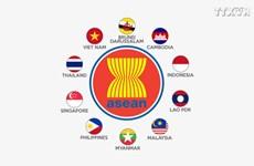 2020年:越南担任东盟轮值主席国时的双重责任