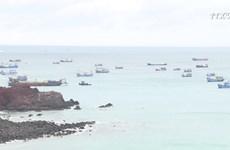 平顺省富贵岛县旅游业见起色