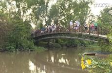 胡志明市与九龙江三角洲携手共促双方旅游业发展