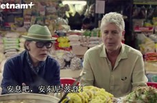 对越南情有独钟的美国厨师