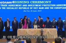 越南与欧盟正式签署自由贸易协定