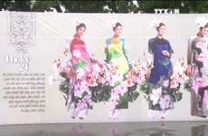 首都河内百姓对越南奥黛的热爱