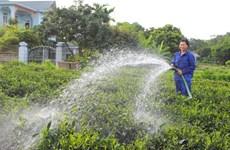 推动首都河内农业恢复增长