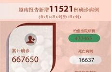 图表新闻:越南报告新增11521例确诊病例 新增死亡病例212例