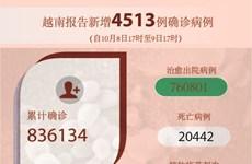 图表新闻:越南报告新增4513例确诊病例 新增死亡病例105例