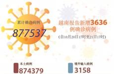 图表新闻:越南报告新增3636例确诊病例 新增死亡病例71例
