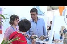 想要有效利用EVFTA    越南皮革鞋类企业仍需加大努力