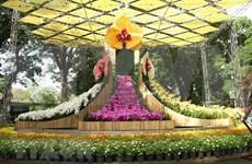 2019年大叻花卉节将于12月20日至24日举行