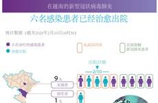 图表新闻:新冠肺炎疫情:在越南的六名患者已治愈出院