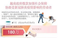 图表新闻:越南政府拨款协助劳动者应对疫情