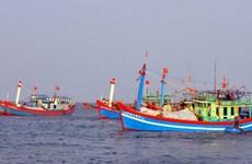 越南广南省渔民继续在传统渔场进行捕捞作业