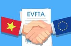 越南国会将在第九次会议投票批准EVFTA协定