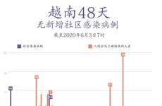 图表新闻:越南连续48天无本地病例