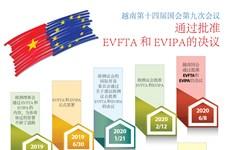 图表新闻:越南国会通过批准《越南与欧盟自由贸易协定》的决议
