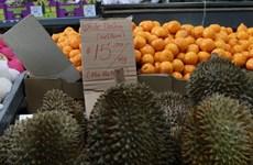 越南着力在澳大利亚市场促销榴莲