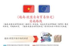 图表新闻:EVFTA正式生效  为越南与欧盟带来利益