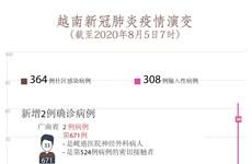图表新闻:8月5日上午越南新增2例确诊病例